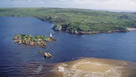 マッコーリー島