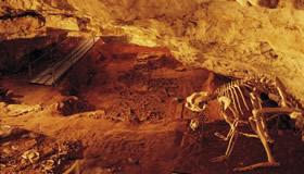 ナラコート/リバースレー哺乳類 化石地域